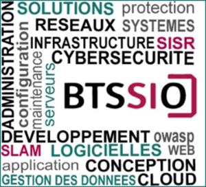 BTS SIO version 2.0